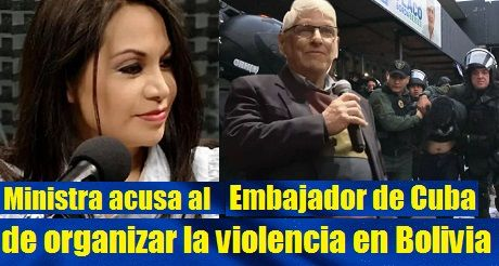 Ministra Acusa Al Embajador De Cuba De Organizar Violencia En Bolivia