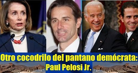Otro Cocodrilo Del Pantano Democrata Paul Pelosi Jr