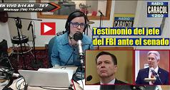 testimonio jefe FBI 238x127